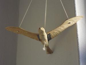 Un oiseau de bois